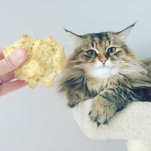 gluten and dairy free cat head biscuits
